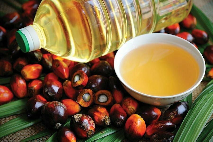 Цялата истина за палмовото масло