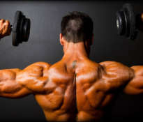 Essential supplements for bodybuilders