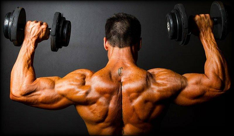 Integratori essenziali per i bodybuilder