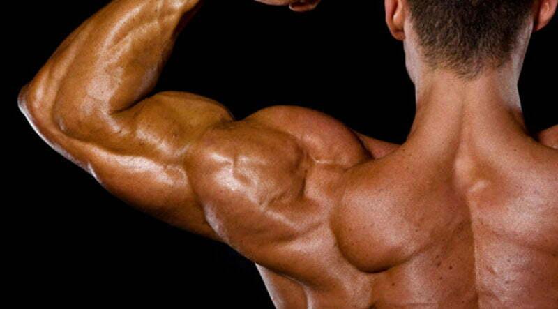 如何提高肌酐水平
