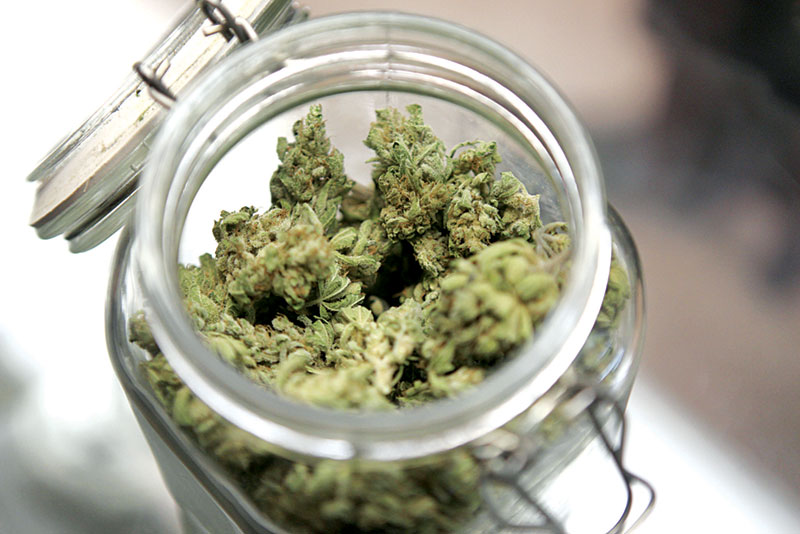 Медицинска марихуана за всички
