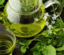 The most valuable advantages of green tea
