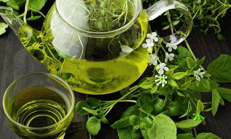 De meest waardevolle voordelen van groene thee