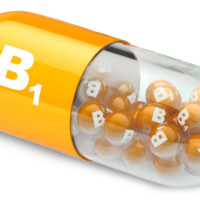 Why is B1 vitamin so important?