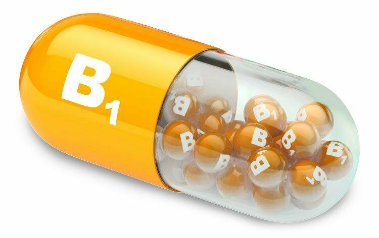B1 비타민은 왜 그렇게 중요한가요?