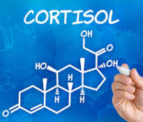 Cortisol, stress and obesity