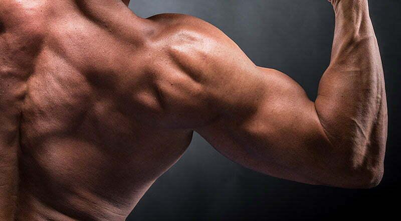 Amino asitler sayesinde kuvvet ve kas kütlesi