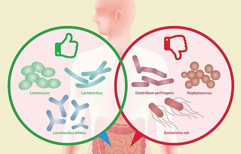 Cum afectează sistemul digestiv tiroida?