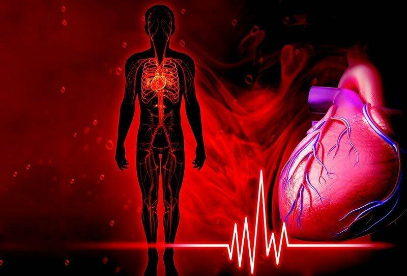 Förebyggande av kardiovaskulära sjukdomar