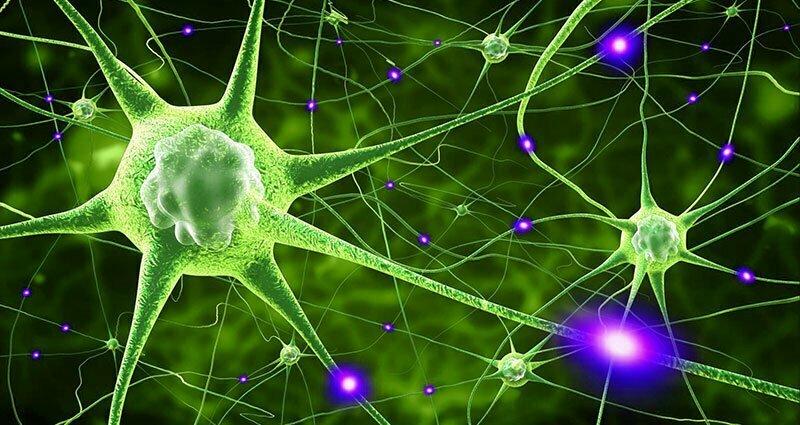 Naturlig behandling af epilepsi